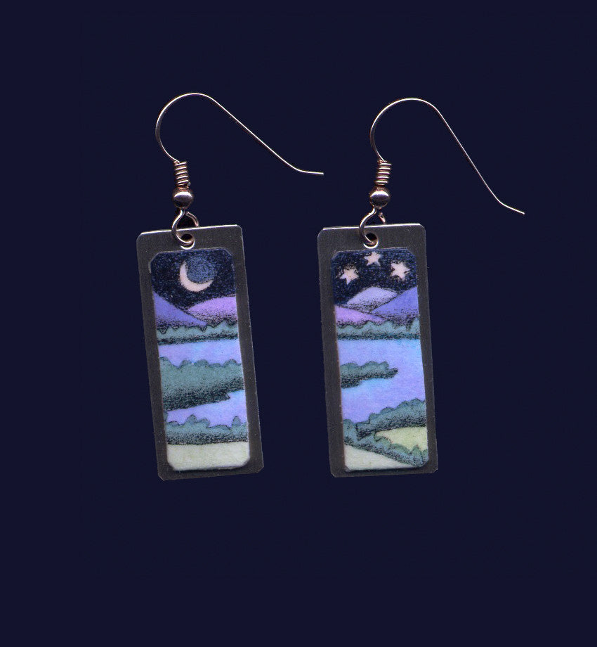 Night Water with Fields and Stars earrings by Daryl Storrs