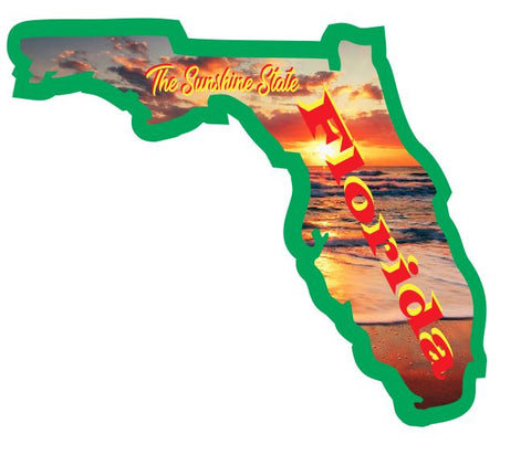 Florida Sticker Decal R7020