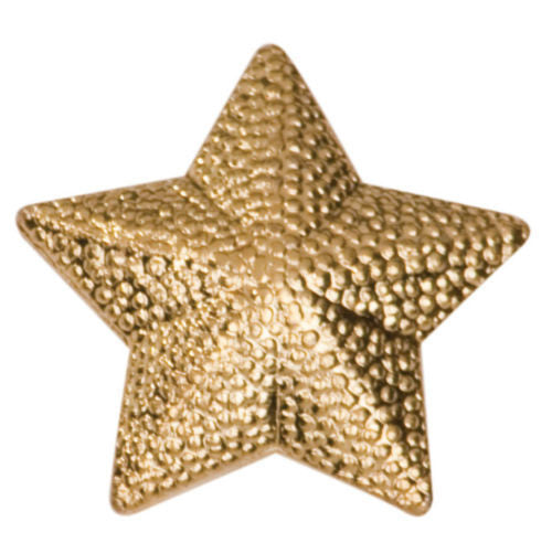 Gold Finish Metal Star Pin TIE TACK School Varsity Insignia Chenille - Winter Park Products