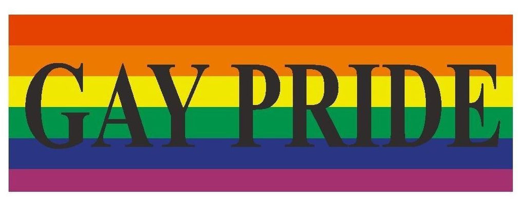 Gay Pride Gay Rights Equality Bumper Sticker or Helmet Sticker D392 - Winter Park Products
