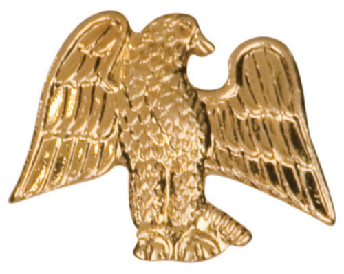 Gold Finish Metal American Eagle Pin TIE TACK School Varsity Insignia Chenille - Winter Park Products