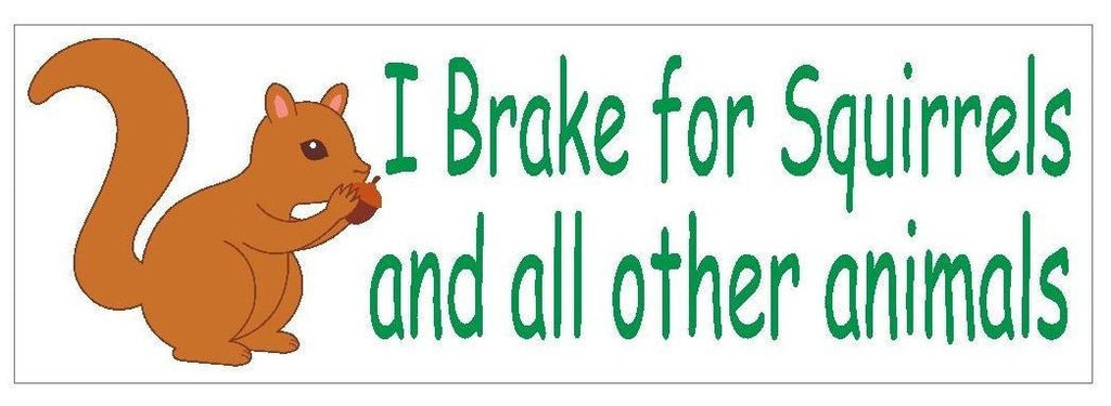 I Brake for Squirrels Bumper Sticker or Helmet Sticker D410 Animal Rights - Winter Park Products