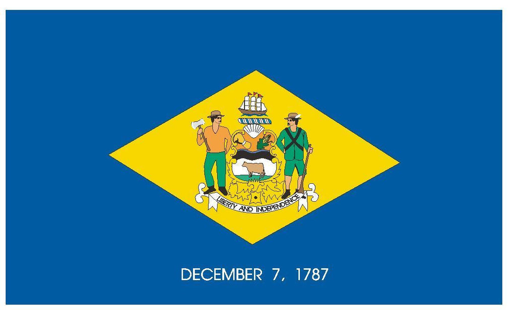 DELAWARE Vinyl State Flag DECAL Sticker MADE IN THE USA F131 - Winter Park Products