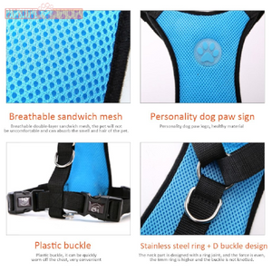 Pawsitively Safe Pet Car Harness and Belt (40% OFF) - Pawsitive Products