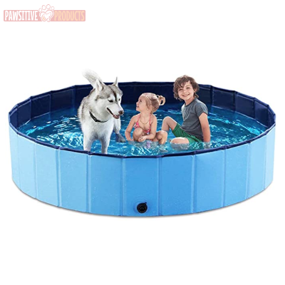 Collapsible Pet Swimming Pool - Pawsitive Products