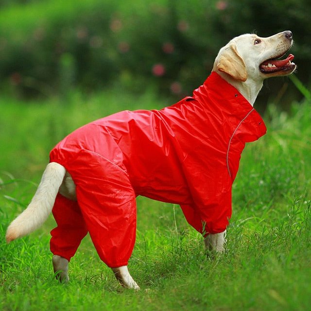 Reflective Hooded Raincoat for Dogs (50% OFF) - Pawsitive Products