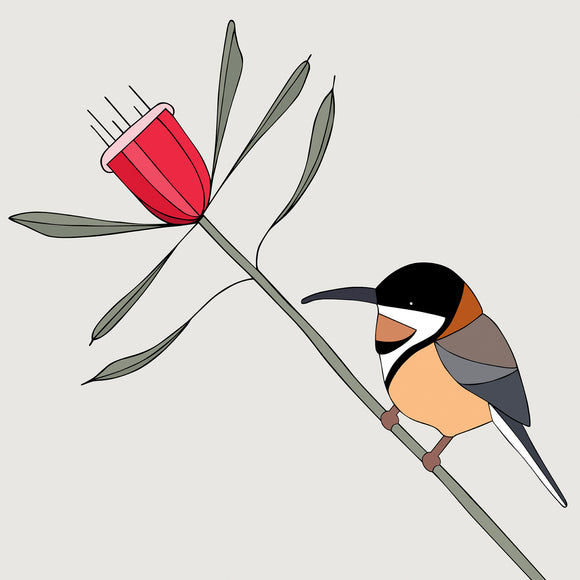 Art Print - Eastern Spinebill and Mountain Devil