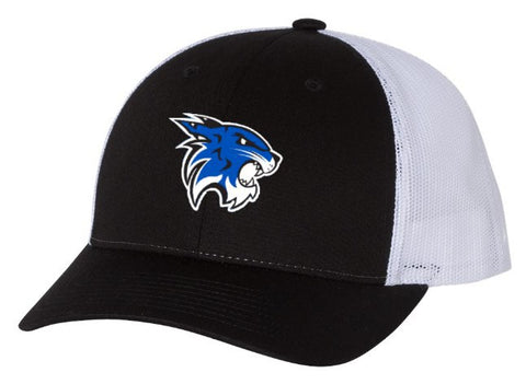 Hilliard Davidson Cats Trucker Hat