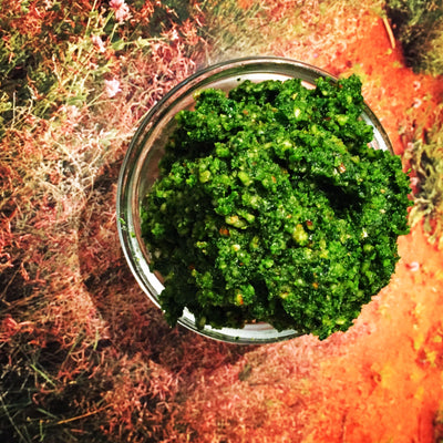 NATIF 'Bush Tucker' Pesto