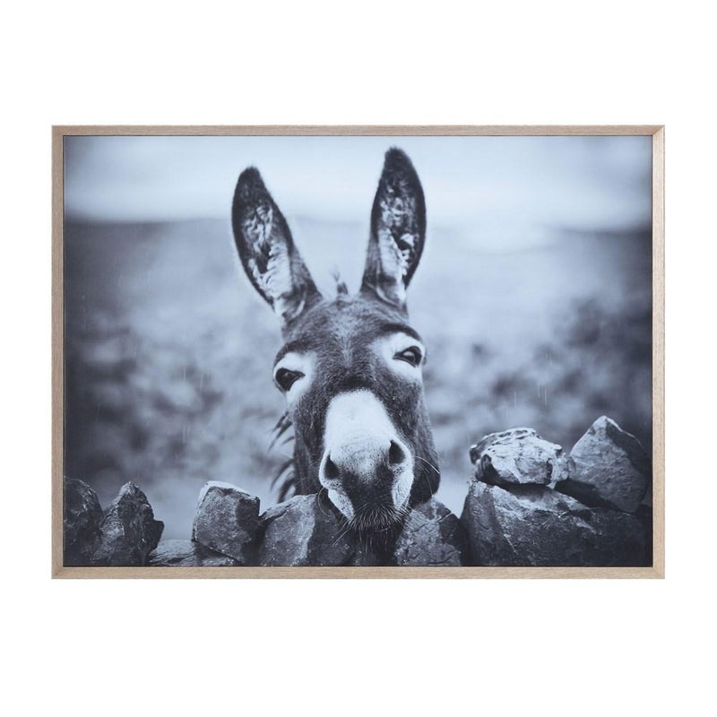 Donkey Wood Framed Canvas Wall Decor