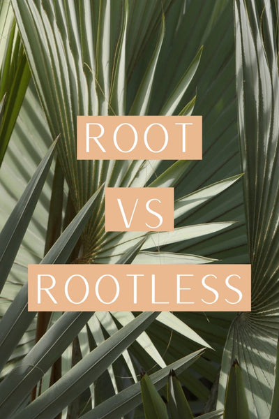 Root vs Rootless