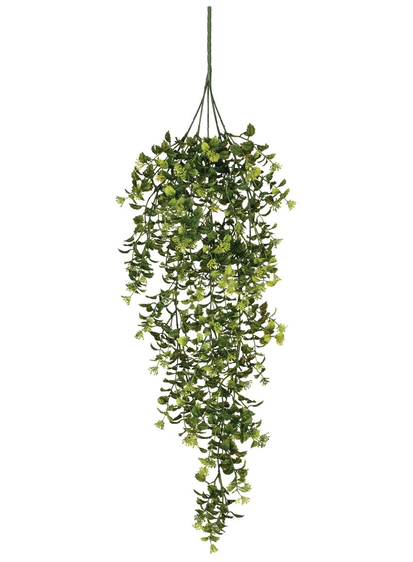 Boxwood Berry Hanging Bush