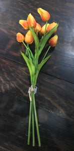 Orange Tulip Bundle