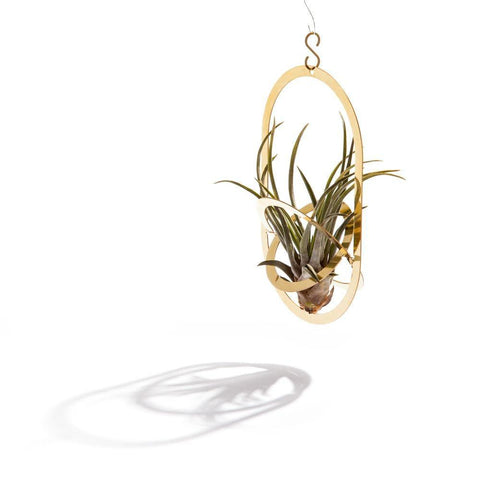 AIR PENDANT - PLANT HOLDER