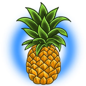 Pineapple Clothing
