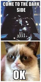 "Cat meme with Darth Vader saying, ""Come to the dark side"". Grumpy cat responds with ""Ok"""