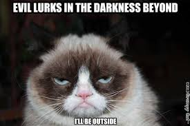 "Grumpy cat meme with the text: ""Evil lurks in the darkness beyond. I'll be outside"""