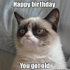 "Grumpy cat meme with the text, ""Happy birthday. You got old"""