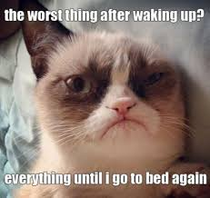 "Grumpy cat meme with the text, ""The worst thing about waking up? Everything until I go to bed again."""