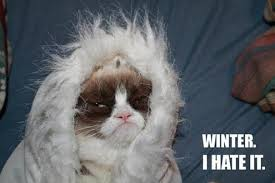 "Grumpy cat wrapped in blanket with the text, ""Winter. I hate it"""