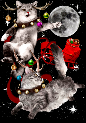 Two grumpy and confused looking cats pull Santa's sleigh across a full moon