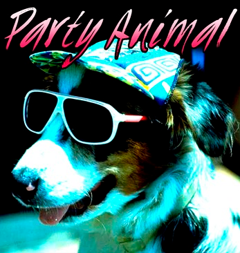 """A party-going pup wearing sunglasses and a hat is printed next to """"Party Animal"""" on the front"""