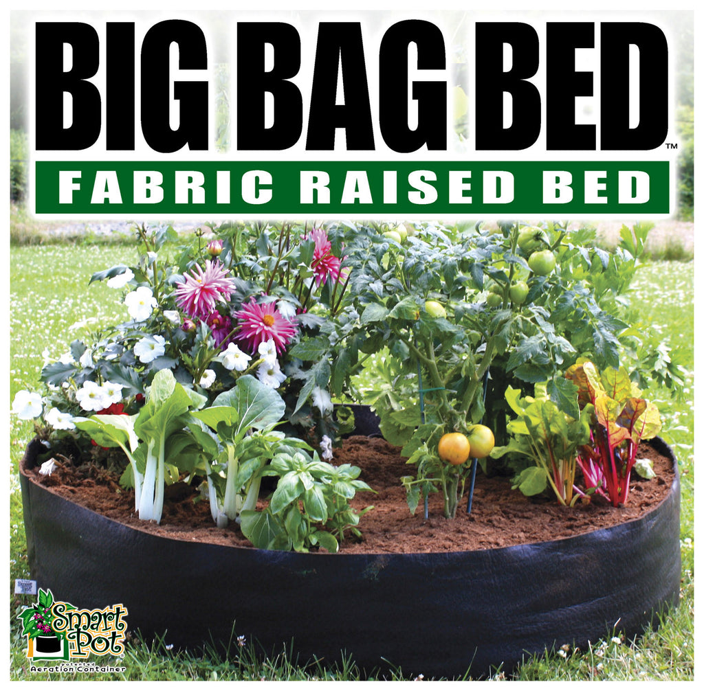 Smart Pot Big Bag Bed