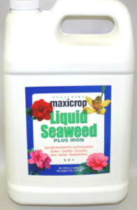 Maxicrop Liquid Seaweed Plus Iron - gal