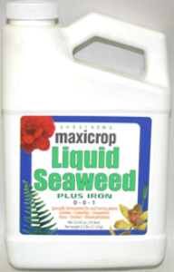 Maxicrop Liquid Seaweed Plus Iron - qt.