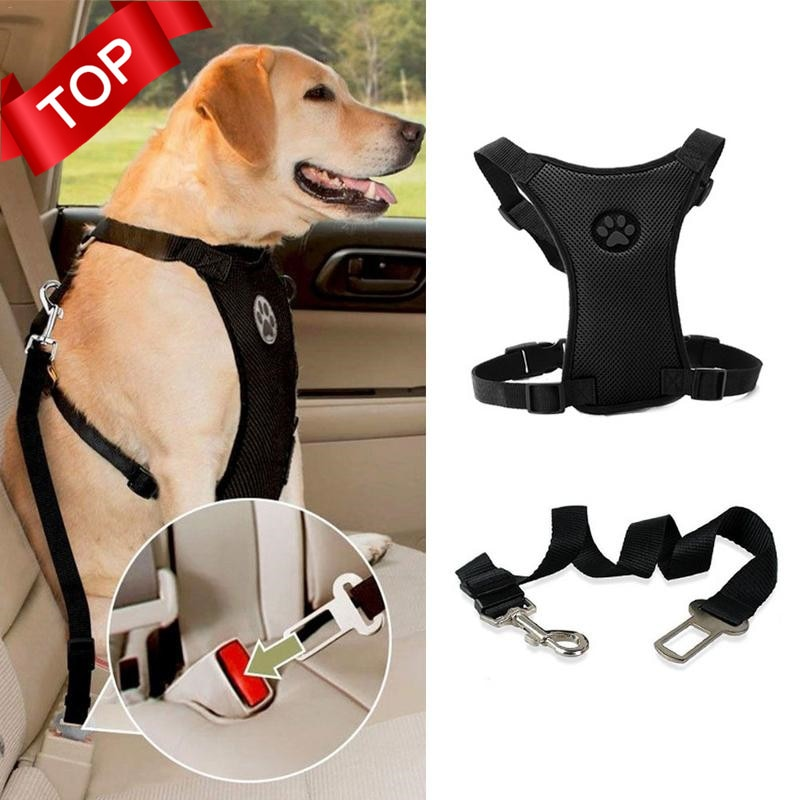 Car Automotive Seat Safety Belt Dog