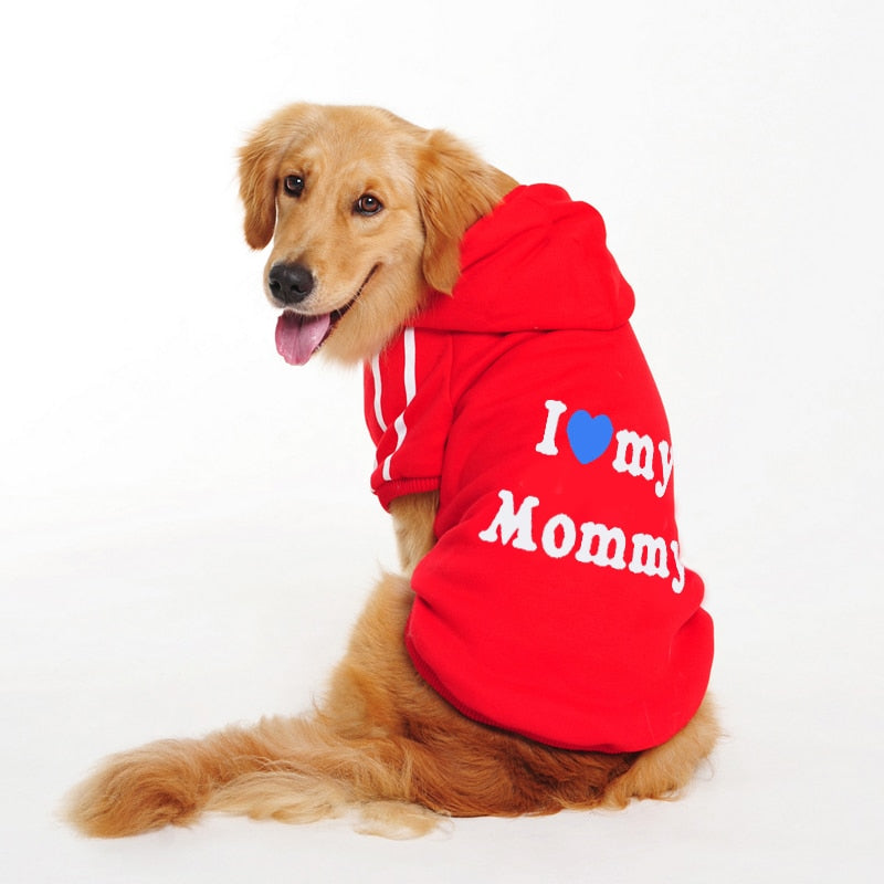 Pet  Winter Autumn Fall Hoodie