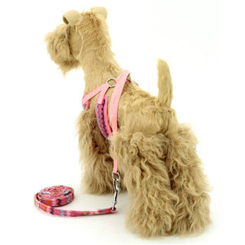Dog Harness Mesh Rainbow