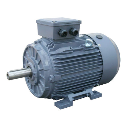 IE1 Standard efficiency 400V cast iron motors 2 Pole
