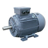 IE1 Standard efficiency 400V cast iron motors 4 Pole