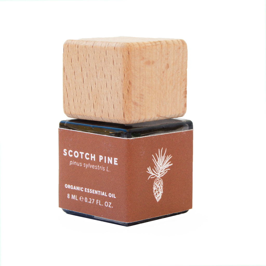 Scotch Pine Essential Oil - Organic