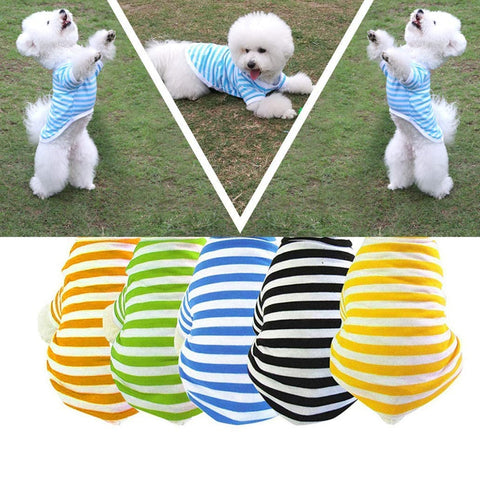 Summer Pet Striped T-Shirt
