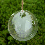 Home Garden Flower Plant Clear Glass Vase Hanging Planter