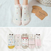5 Pairs/Lot Cartoon invisible socks