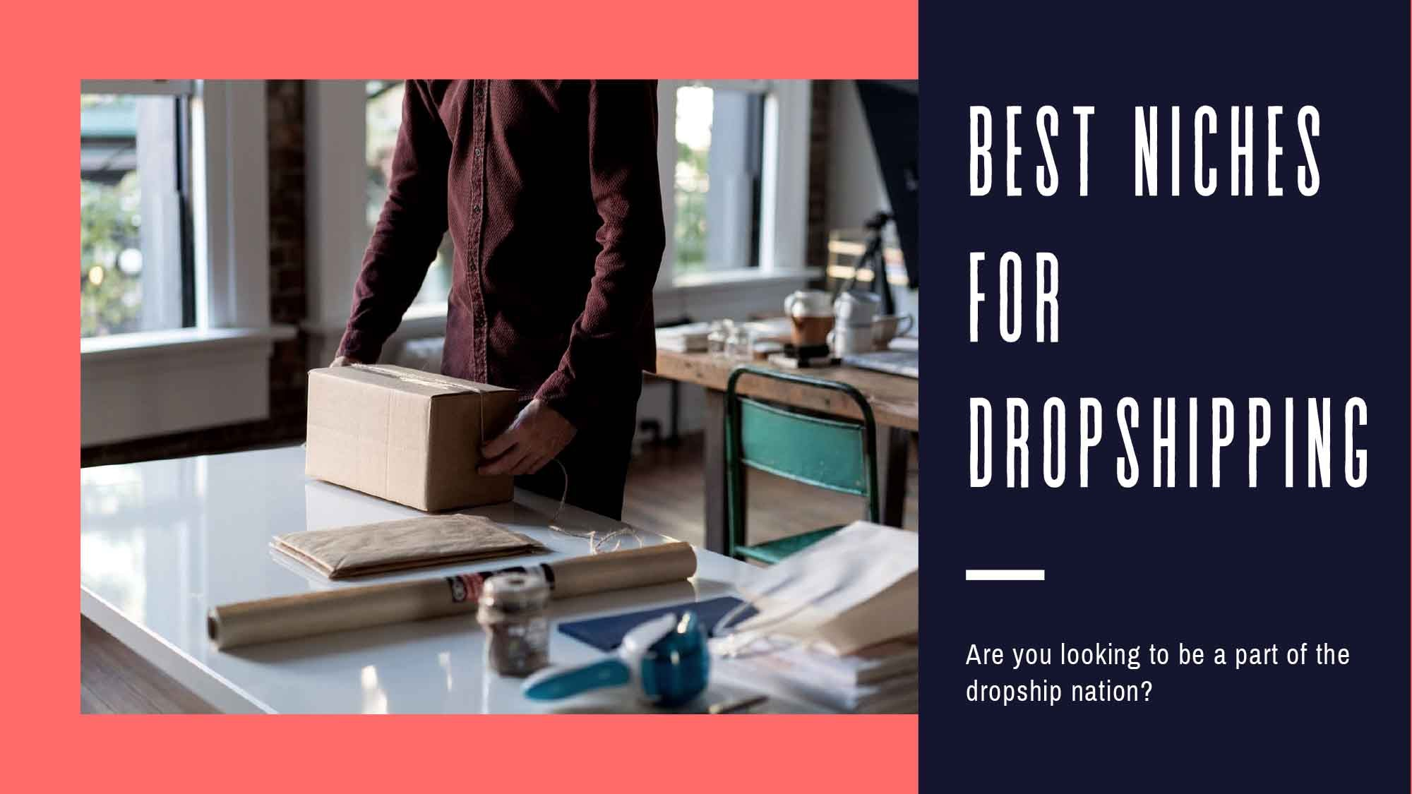 Best Niches For Dropshipping & How to The Best Dropshipping Ideas!