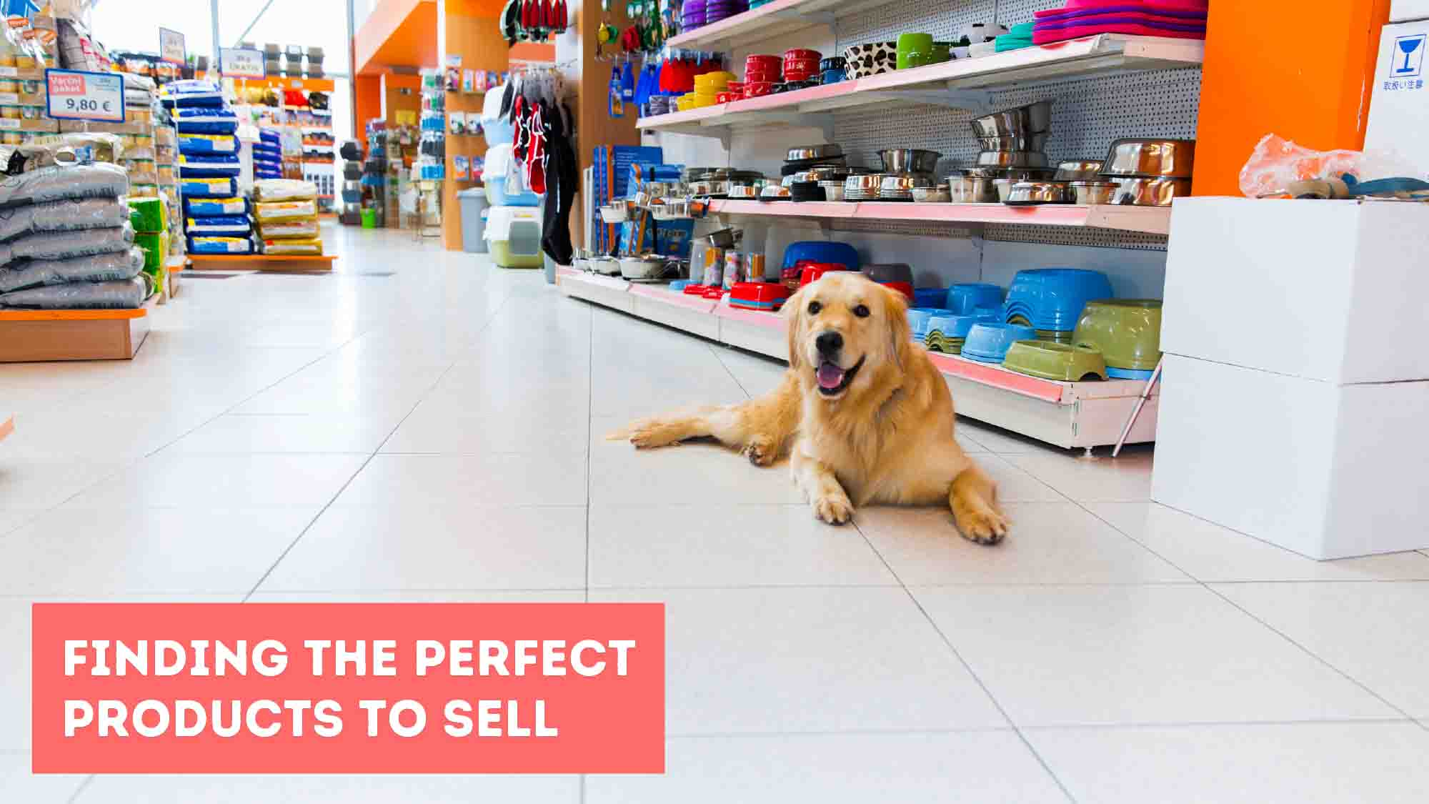 Finding The Perfect Products To Sell - Dropship USA