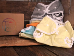 Cloth Diapering Simple Sampler