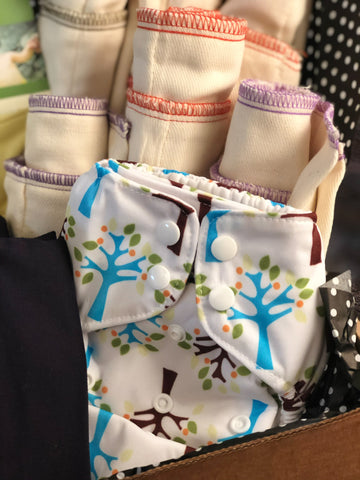 Cloth Diapering Pro Kit