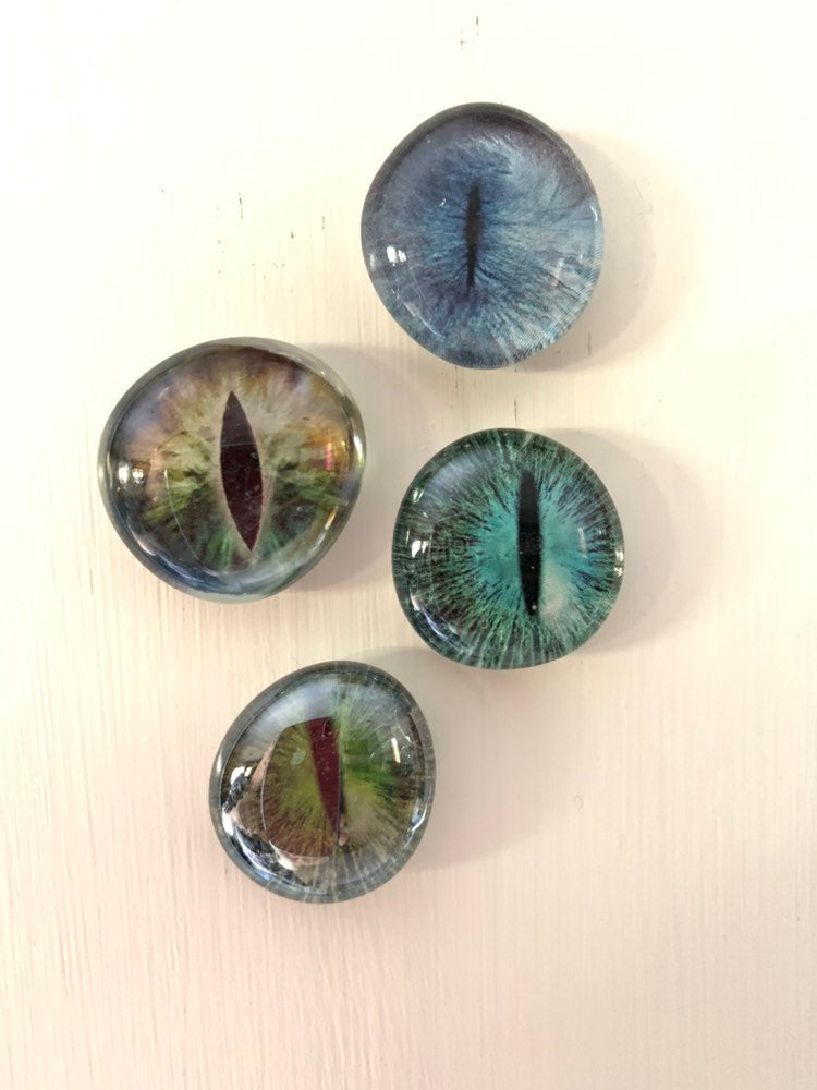 Monster Eyeball Magnets