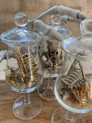 Mini Skeletons in a Jar