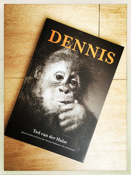 DENNIS by Ted van der Hulst