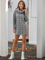 Sweater Turtle Neck Dress