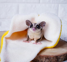 Load image into Gallery viewer, Sugar Glider and Small Pets Banana Pouch