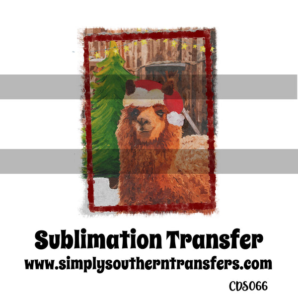 Christmas Llama Sublimation Transfer CDS066