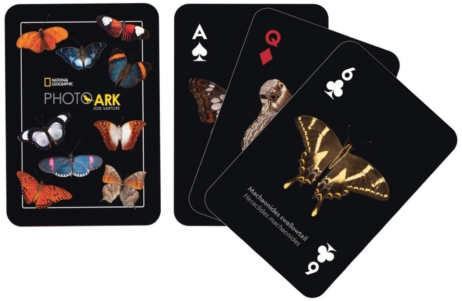 NatGeo Cards - Butterflies