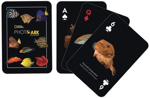 NatGeo Cards - Fish